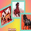 Running village horses puzzle