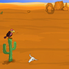 Sahara Desert Escape