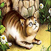 Scared cat slide puzzle