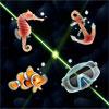 Scuba Diving Match