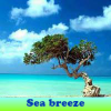 Sea breeze 5 Differences