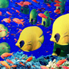seabed world jigsaw puzzle