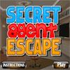 Secret Agent Escape
