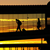 Silhouette Over the Bridge