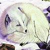 Sleepy white fox puzzle