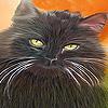 Smart garden cat slide puzzle