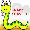 Snake classic
