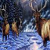 Snow and deers hidden numbers
