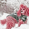 Snow and pink dog slide puzzle