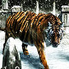 Snow and tiger slide puzzle