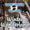 SSSG-Winter Wonderland