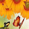Sunflowers garden puzzle
