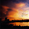 Sunset Landscape Jigsaw Puzzle