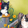 Sweet cats  puzzle
