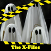 The X-Files. Find objects