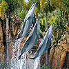Three dolphin in the pool slide puzzle