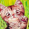 Tiny alone cat slide puzzle