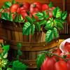 Tomato Puzzle
