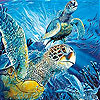 Turtles  in the ocean slide puzzle