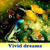 Vivid dreams 5 Differences