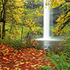 Waterfall in Fall Jigsaw Puzzle