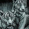 White funky tigers slide puzzle