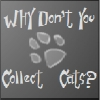 Why don't you collect cats?