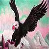 Wild acrobat eagle puzzle