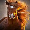 Wild  big horse slide puzzle
