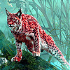 Wild lynx in the woods puzzle