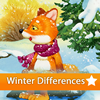 Winter 5 Differences