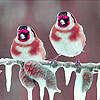Winter birds slide puzzle