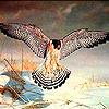 Winter eagle puzzle