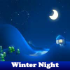 Winter Night 5 Differences