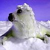 Winter season and animals puzzle