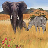 Zebra and elephants puzzle