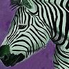 Zebras in the desert puzzle